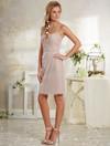 Alfred Angelo : Modern Vintage Bridesmaids 8630S