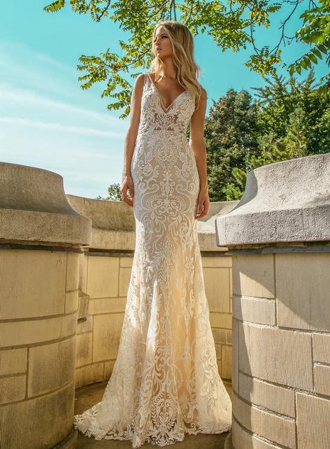 e6e6e9557e6 Most Popular Dresses