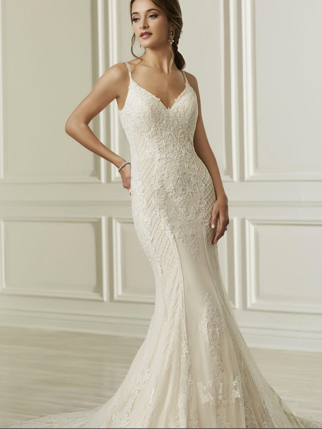 31108 gown from the 2019 Adrianna Papell collection, as seen on Bride.Canada