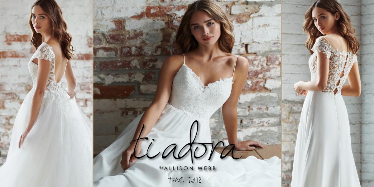 Ti Adora by Allison Webb