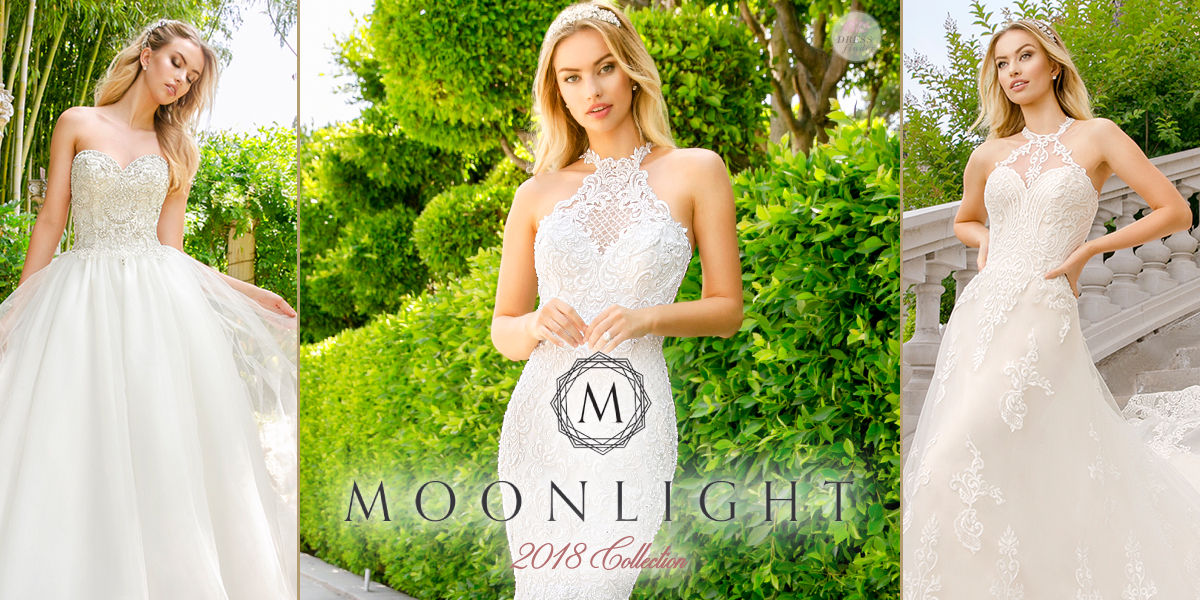 Moonlight : Couture