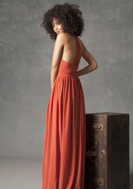 Cape Town (back) Bridesmaids                                      dress by Ivy & Aster Maids