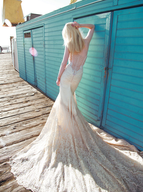 BR-14-10 (bacl) gown from the 2014 Inbal Dror collection, as seen on dressfinder.ca