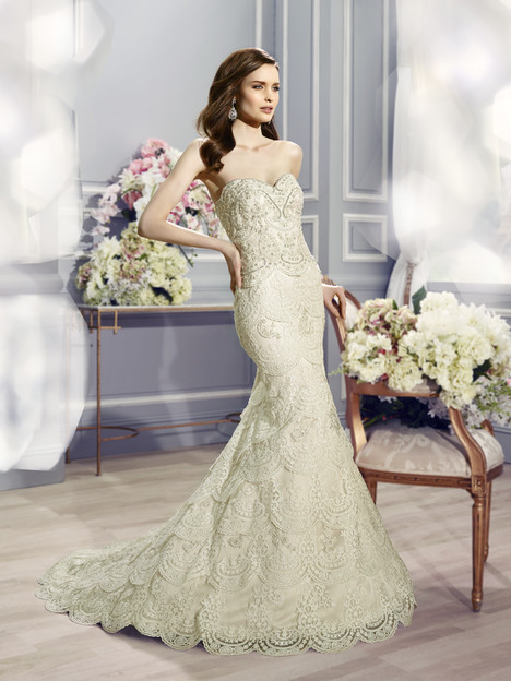 H1288 Wedding                                          dress by Moonlight : Couture