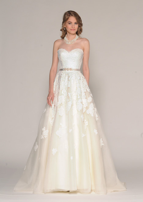 Aster Wedding dress by Barbara Kavchok