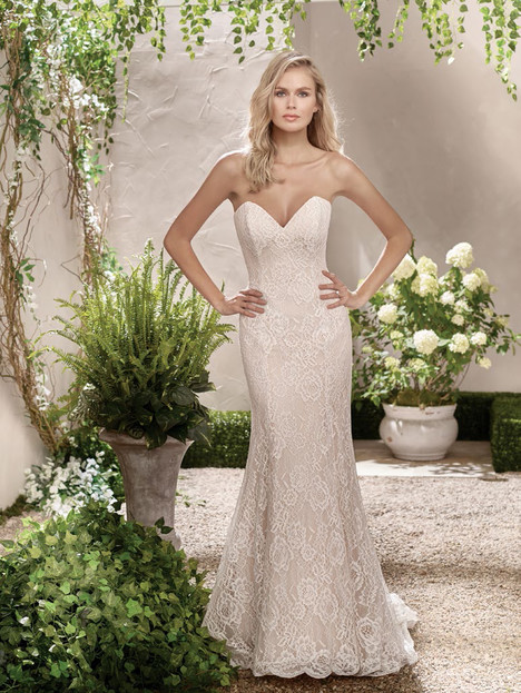 F191002 (2) Wedding                                          dress by Jasmine Collection
