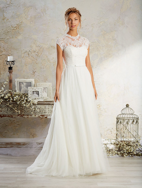 8570 Wedding dress by Alfred Angelo : Modern Vintage Bridal