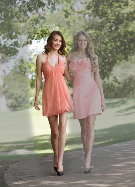 20065 Bridesmaids dress by Ashley & Justin : Bridesmaids