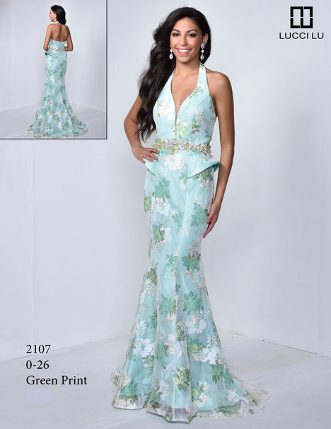 2107 Prom                                             dress by Lucci Lu