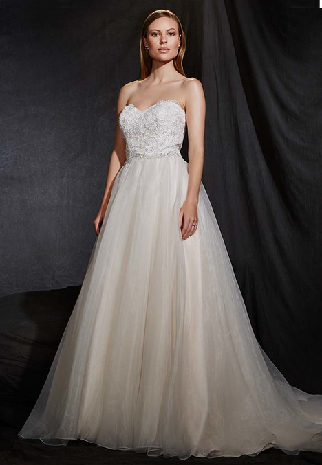1609 Wedding                                          dress by Madison Collection