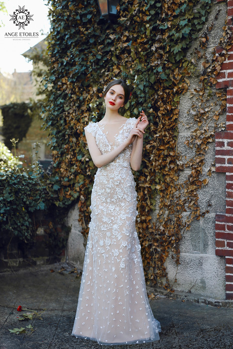 Velari (2) Wedding                                          dress by Ange Etoiles