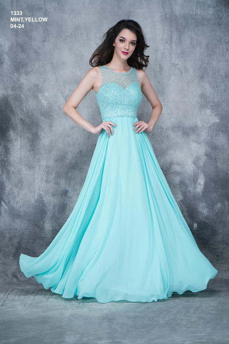 1333 Prom                                             dress by Nina Canacci