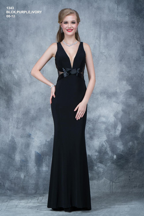 1343 Prom                                             dress by Nina Canacci