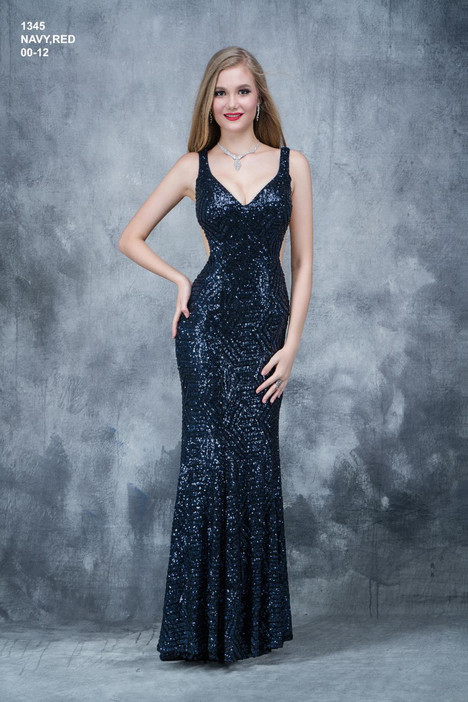 1345 Prom                                             dress by Nina Canacci