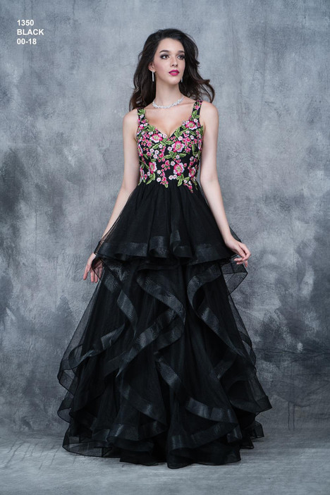 1350 Prom                                             dress by Nina Canacci