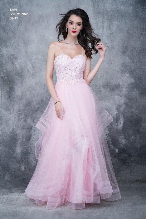 1351 Prom                                             dress by Nina Canacci