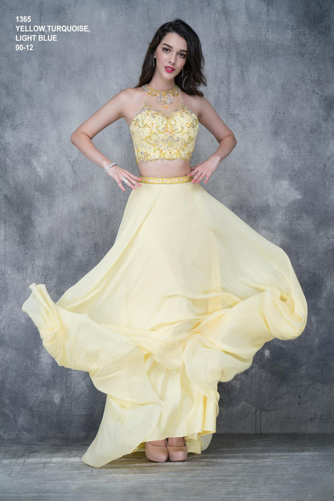 1365 Prom                                             dress by Nina Canacci