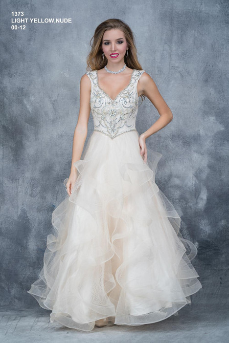 1373 Prom                                             dress by Nina Canacci