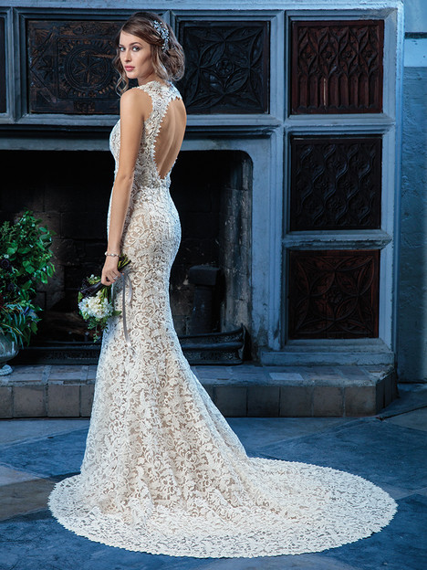 C135 (back) Wedding                                          dress by Amare