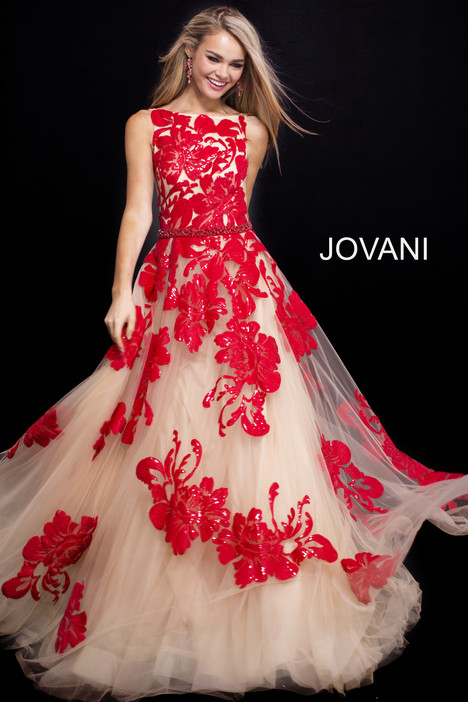 48320 Prom                                             dress by Jovani