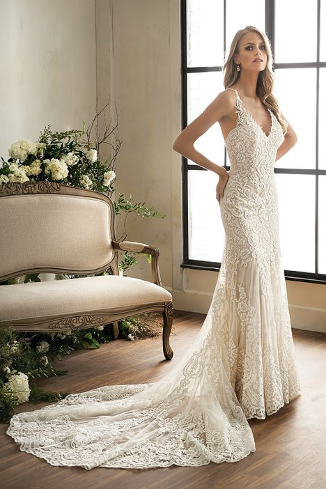 T202003 Wedding                                          dress by Jasmine Couture