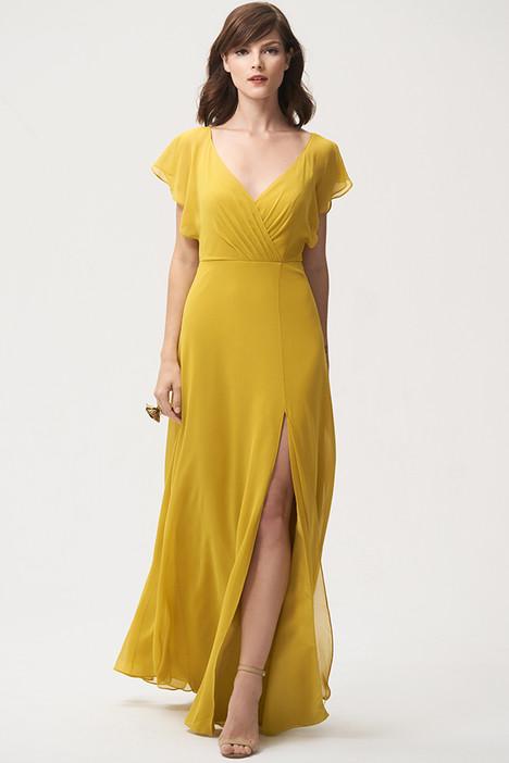 Alanna Bridesmaids                                      dress by Jenny Yoo Bridesmaids
