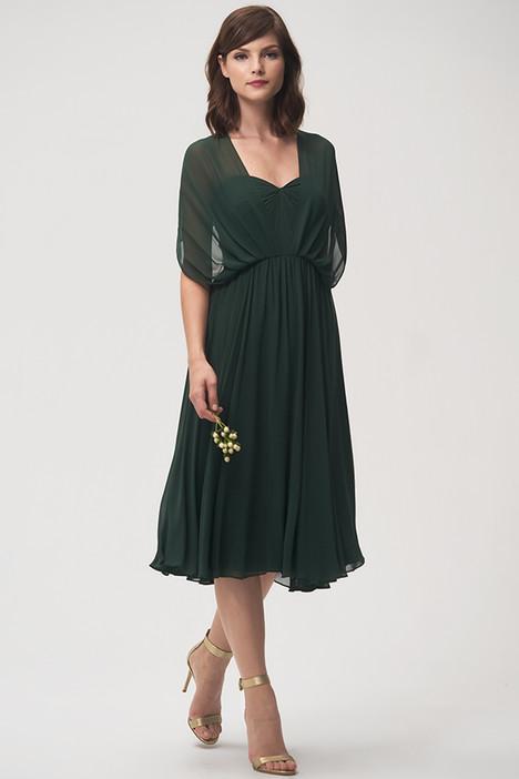 Emmie (2) Bridesmaids                                      dress by Jenny Yoo Bridesmaids