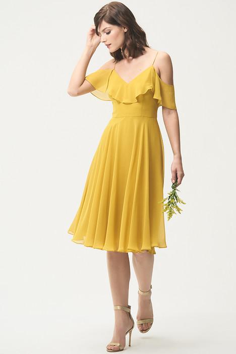Kelli Bridesmaids                                      dress by Jenny Yoo Bridesmaids