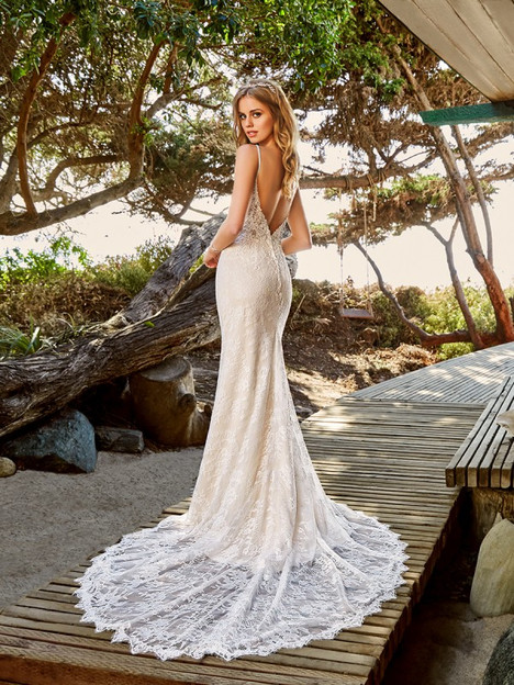 Waverly (Back) Wedding                                          dress by Simply Val Stefani