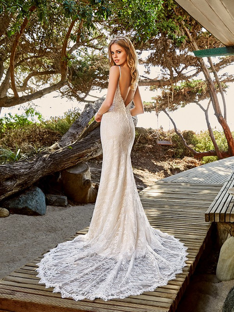 Waverly James (Back) Wedding dress by Simply Val Stefani