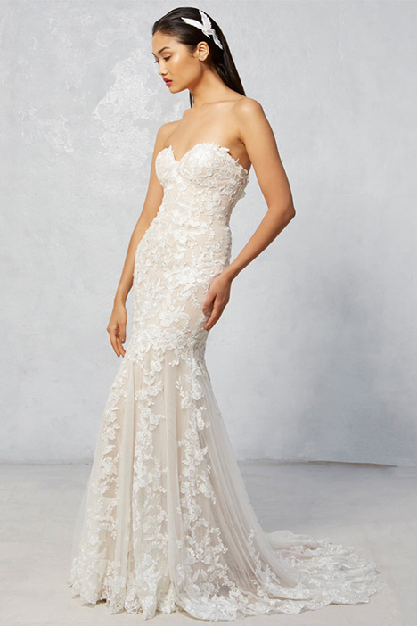 Raven Wedding                                          dress by Ivy & Aster