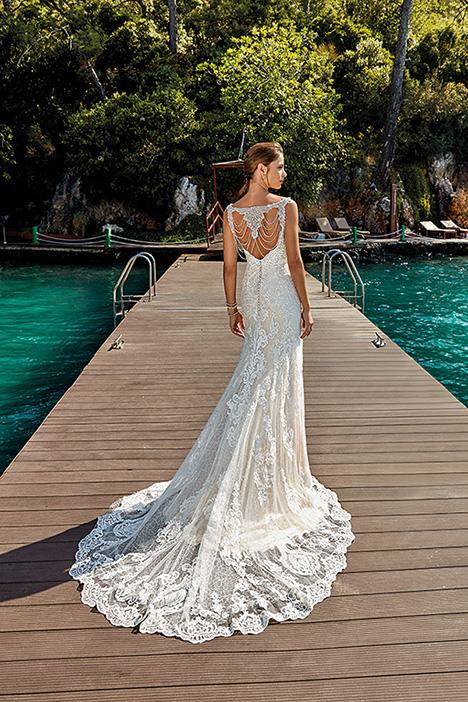 Sara (back) (DR1928) Wedding                                          dress by Eddy K : Dreams