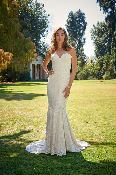 PA9340N Wedding                                          dress by Venus Bridal: Pallas Athena