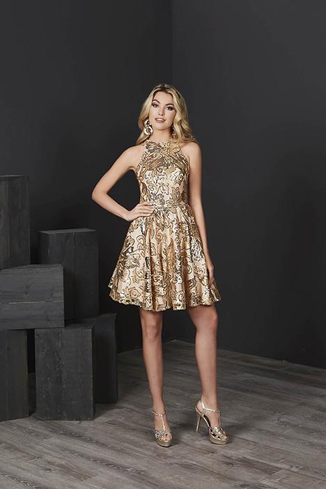 27217 Prom                                             dress by Tiffany Designs