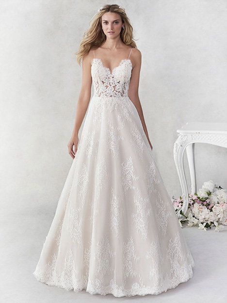 be457 Wedding                                          dress by Ella Rosa