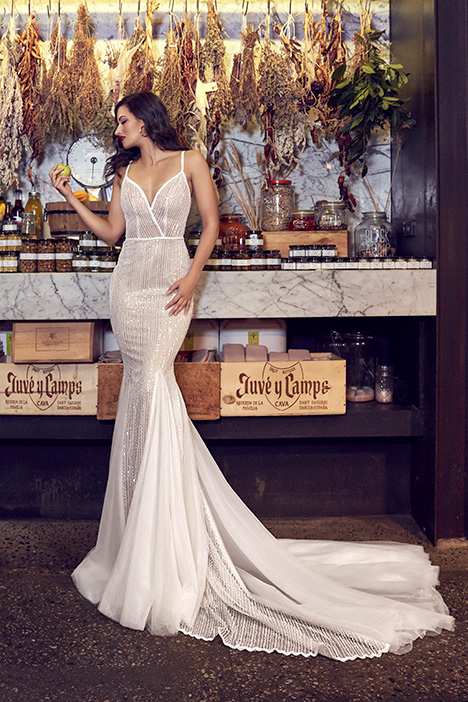 ZB 235 Wedding                                          dress by Zavana Bridal