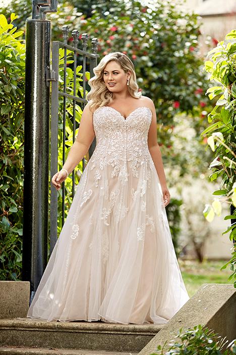 Y11949 + Wedding                                          dress by Sophia Tolli