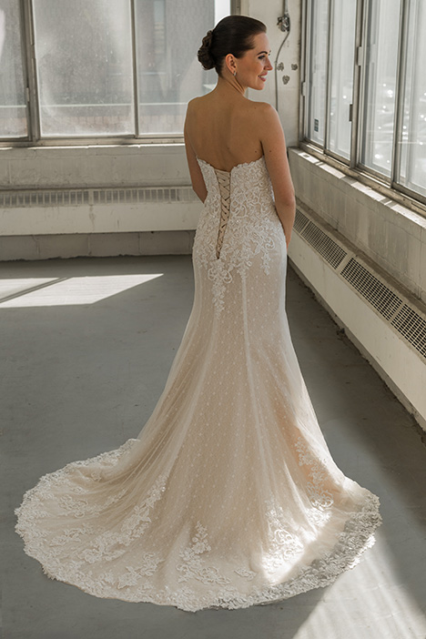 gp1077 (back) Wedding                                          dress by Grace by Bridalane