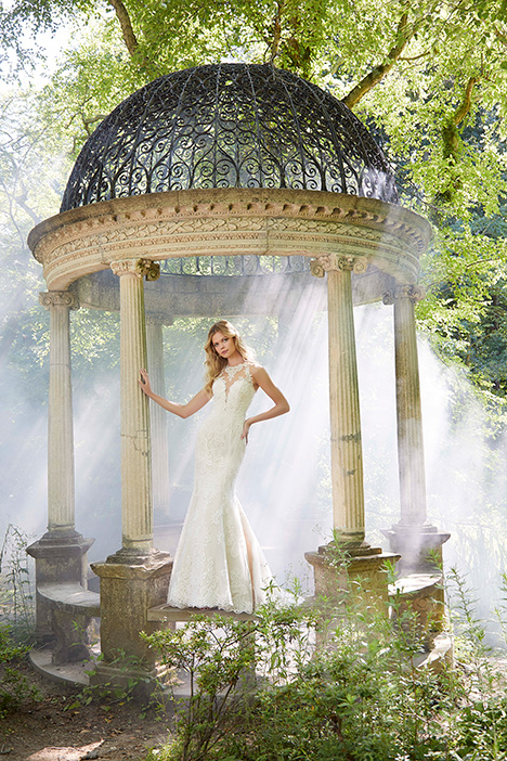 2038 Wedding                                          dress by Morilee Bridal