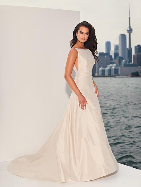 4832 Wedding                                          dress by Paloma Blanca