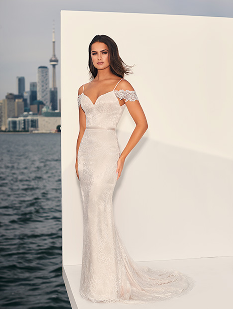 4843 Wedding                                          dress by Paloma Blanca