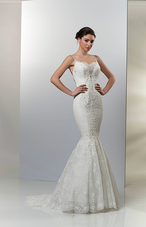 AT4715 Wedding                                          dress by Venus Bridal: Angel & Tradition