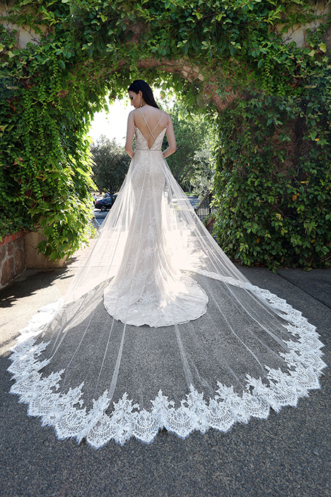 13236 Back Wedding                                          dress by Cristiano Lucci